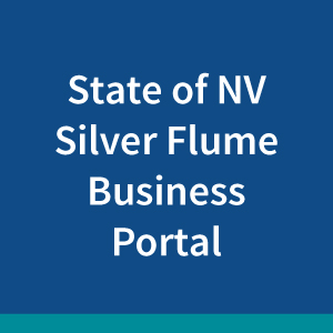 nevada-silver-flume-business-portal2